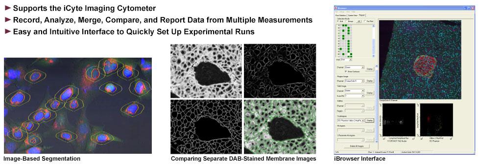 iGeneration Cytometric Analysis Software