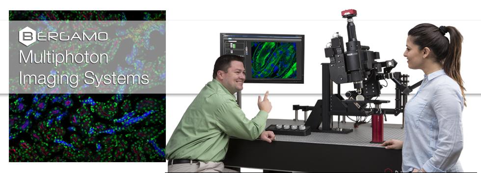 Bergamo® IIシリーズ多光子顕微鏡