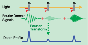 Fourier Domain Signals