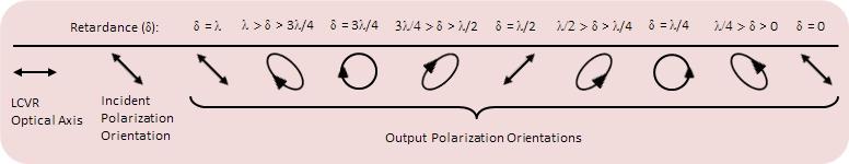 Polarization Control