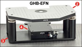 GHB-EFN