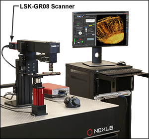 GR Scanner with MM202 DIY Multiphoton Kit