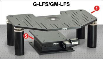 G-LFS and GM-LFS