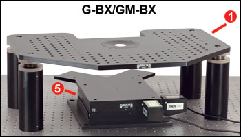 G-BX and GM-BX