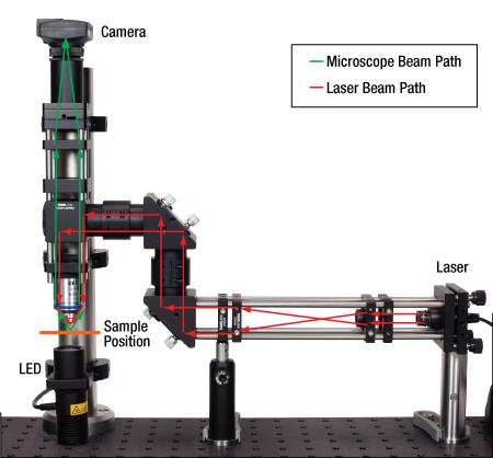 Optical Tweezers Beam Path