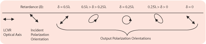 Polarization Control