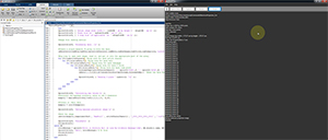 Execute MATLAB Scripts and ImageJ Macros Directly from ThorImageLS