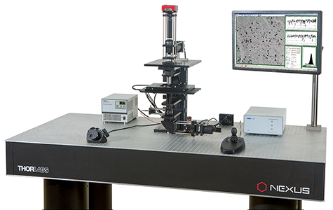 With the ability to perform DIC imaging, confocal imaging, and patch clamp recording, this configuration highlights the modularity of the Cerna platform. (See the <em>Confocal</em> tab for details.)