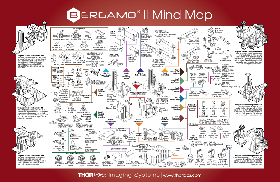 Bergamo II Mind Map