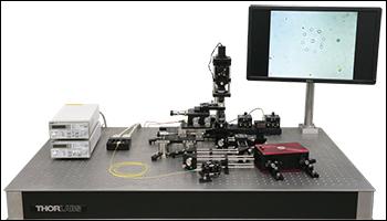SLM in Optical Tweezers